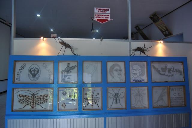 Instalasi Laboratorium Koleksi Referensi Vektor Penyakit